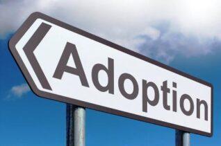 Adoption-quebec